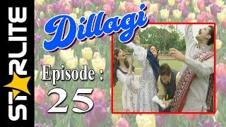 Dillagi, Episode 25, Top Pakistani Drama, URDU Comedy, Drama Serial Kashif Mehmood, Naseem Vicky
