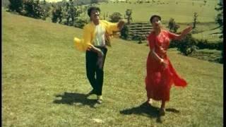 Aththaku Yamudu Ammayiki Mogudu: 'Digu digu...' song!