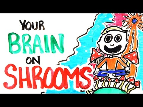 Xxx Mp4 Your Brain On Shrooms 3gp Sex
