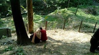 মানুষ সেক্স করে আর ঘোড়া পাহারা দেয় কি অদ্ভুত দেখুন