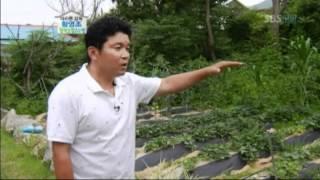 마라톤 황영조의 개인 주택 공개 @잘먹고 잘사는 법 20120630