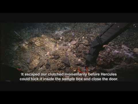 Xxx Mp4 Lost City Edit You Tube HQ Mp4 3gp Sex