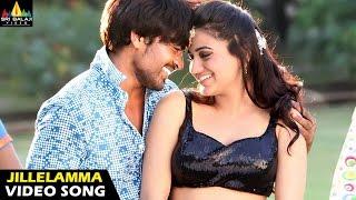 Rye Rye Songs | Jillelamma Jitta Video Song | Srinivas, Aksha | Sri Balaji Video
