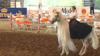 Andalusian Horse Garrido and Mylessa Spanish Dancing at ANCCE Show