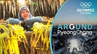 When Things Smell Fishy in PyeongChang it
