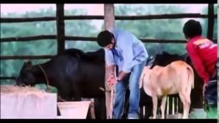 khoka 420 bangla movie bin tere tere bin hd song[ dj milon sk ali]