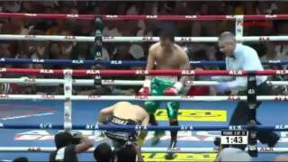 Nonito Donaire Vs Zsolt Bedak - Punishment Knock Down (April 23, 2016)