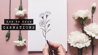 How To Draw Carnations | Floral Illustration