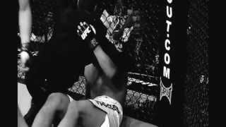 MMA Highlights