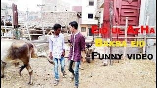 EID UL AZHA BAKRA EID New FUNNY VIDEO Hyderabad Vines