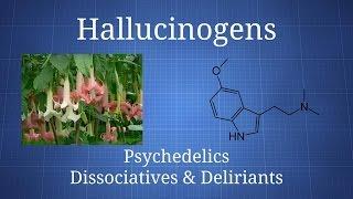 Hallucinogens: How Psychedelics, Dissociatives, & Deliriants Differ