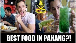BEST FOOD IN PAHANG?!! | ALAMARK!