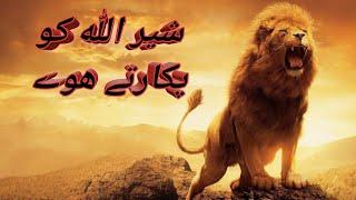 Mojza lion Allah ko pukarty huay