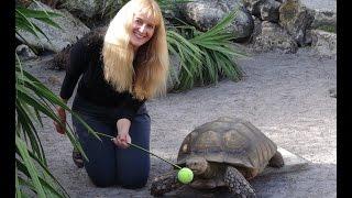 Exotic Animal Trainer Barbara Heidenreich