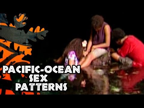 Xxx Mp4 Pacific Ocean Sex Patterns 3gp Sex