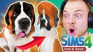 CREATING MY SAINT BERNARD in The Sims 4 - Cats & Dogs!!