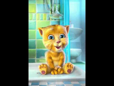 Talking Ginger ~ IPL Dil Jumping Japang