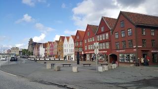 Ooh, oh du armer Floh | Bergen 2 - Roadtrip Schweden / Norwegen [VLOG 34]