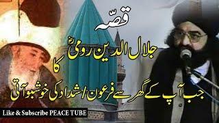 Peer Naseer ud Din Naseer || Story of Jalaluddin Rumi || Peace Tube ||