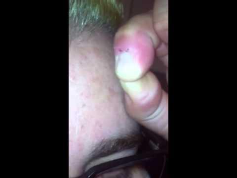 Xxx Mp4 Chino62477 Has Hair Pulling Drama 3gp Sex