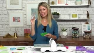 Learn to Make Shaker Cards with Stephanie Barnard