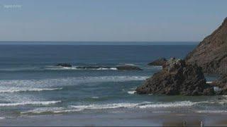Warmer ocean temperatures are killing fish
