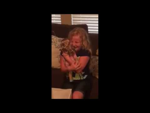 Little girl cries tears of joy after getting doll with a prosthetic leg VIDEO