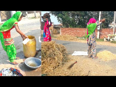Xxx Mp4 Indian Village Life Rural Life Of Punjab India Village Lifestyle Of Punjab IND 3gp Sex