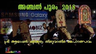 The Glimpse of Anchal Pooram - 2018 അഞ്ചൽ പൂരത്തിൽ അണിനിരന്ന ഗജവീരന്മാർ