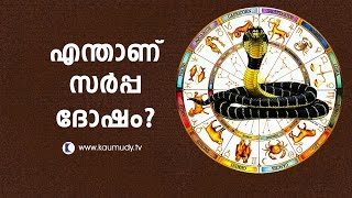 What is Sarpa dosham ? | Pranavam | Ladies Hour