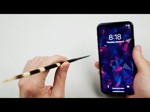 Xxx Mp4 Can Porcupine Quills Puncture An IPhone X 3gp Sex