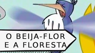 O beija-flor e a floresta - Susana Gomes