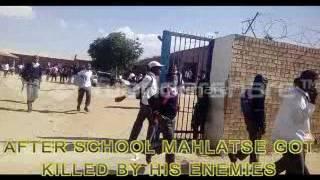 Motshabo kidibone project