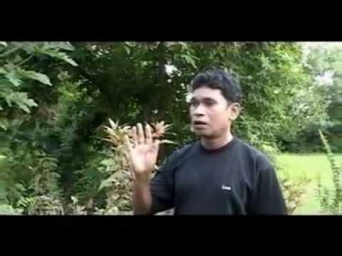Lafanga Number Dedh -Full Comedy Natak - Superhit Chhattisgarhi Movie