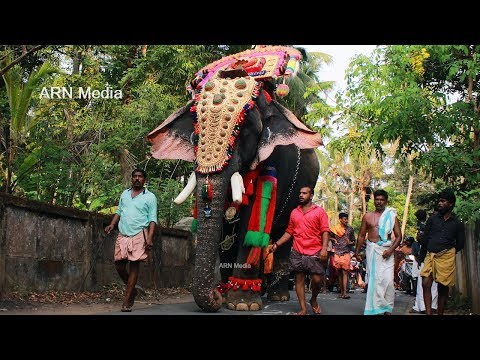 Xxx Mp4 Thrikkadavoor Sivaraju At Thirupazhancheri Pooram 2018 3gp Sex