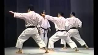 Tetsuhiko Asai Kihon and Kata
