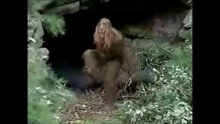 Messin With Sasquatch Greatest Hits
