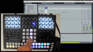 Livid Instruments XPC Controller
