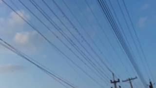 আকাশে পাখিদের দুর্লভ খেলা না দেখলে মিস করবেন - AMAZING BIRDS GAME