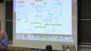 #35 Biochemistry Lecture (Nitrogen and Amino Acid Metabolism) from Kevin Ahern's BB 350
