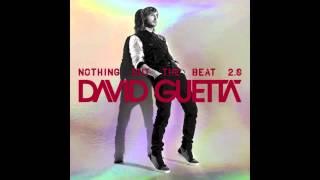 David Guetta - Play Hard (feat. Ne-Yo & Akon) (Original mix)