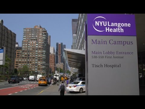 Xxx Mp4 NYU Offers Free Tuition For Medical School 3gp Sex