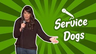 Service Dogs (Stand Up Comedy)
