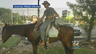 Old-Fashioned Horse Ride From South Carolina To Florida Keys Ends In Man's Arrest