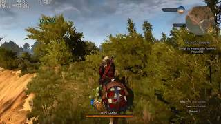 The Witcher 3 High Settings [GTX 1060, i7 8750H] MSI GP73 Leopard 8RE