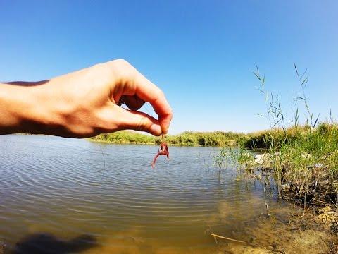 хитрости для ловли на червя