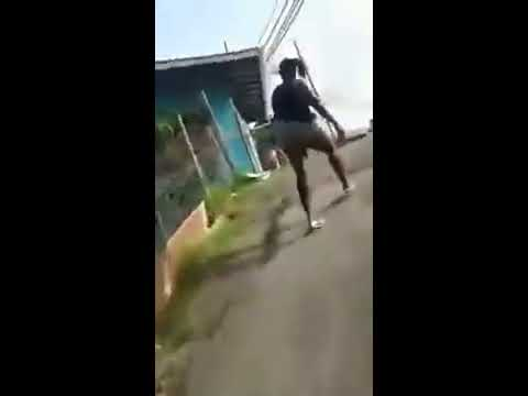 Trini gal dem a war over man even the dog get in the fight