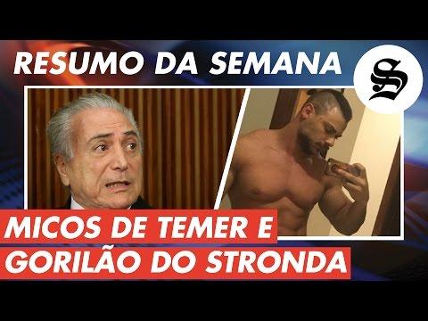 watch MICOS DE TEMER, GORILÃO DO STRONDA E MAIS | Melhores da Semana | #Sensacionalista