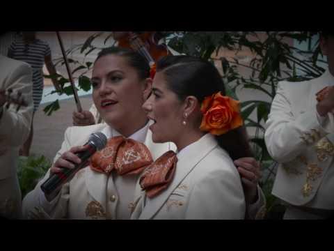 FLASHMOB MARIACHI SOY NAVAL SOY HECHO EN MÉXICO