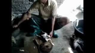 Wisata Kuliner Ayam Panggang Gandu Karangrejo.mpg